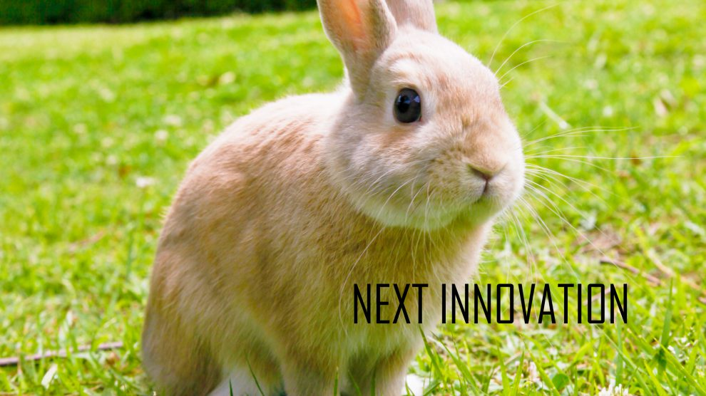 next innovation rabbit